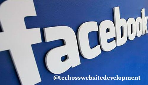 facebook logo techoss website development